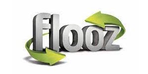 logo flooz